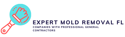 Expert Mold Removal FL